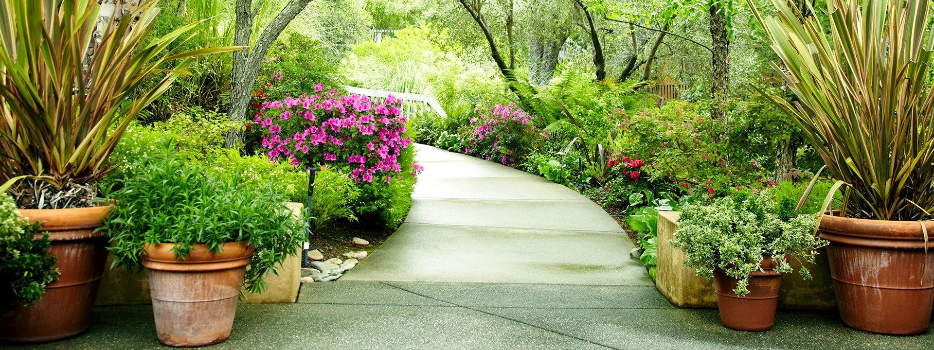 Services | Trinity Memorial Gardens