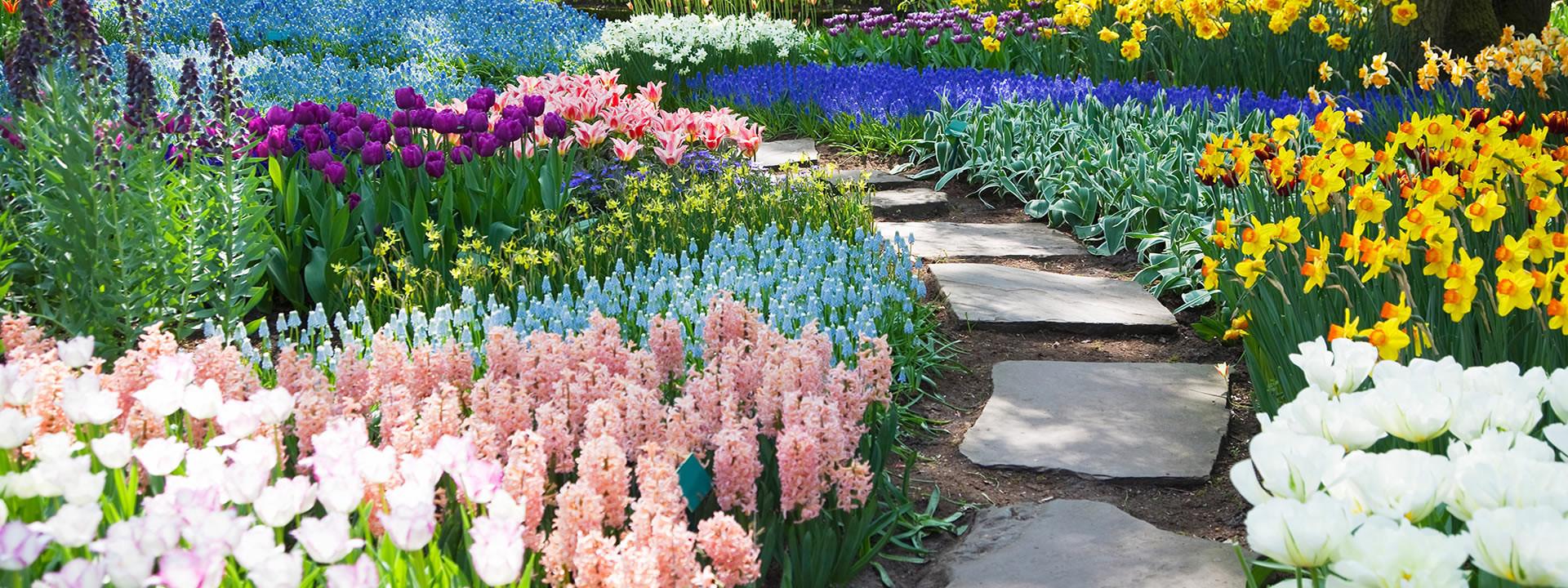 Grief & Healing | Bellerive Gardens Cemetery