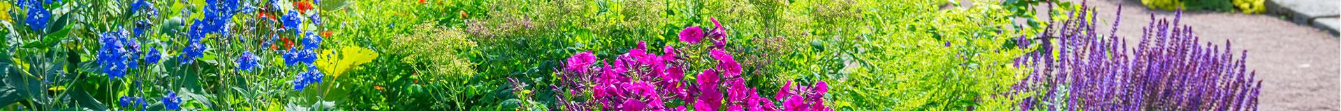 Obituaries   Roselawn Memorial Gardens