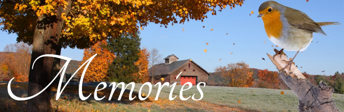 Grief & Healing | W.D. Lemon & Sons Funeral Home