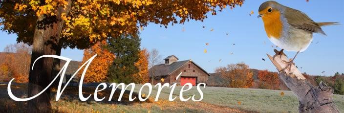 Grief & Healing   Gilmore Memorial Funeral Service