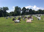 Saint Mary Cemetery, Crucible PA
