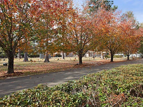 Beautiful Grounds of Pinecrest Memorial Gardens