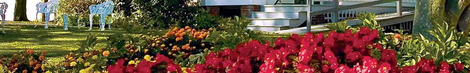 What We Do | Spengel-Boulanger Funeral Home & Dauderman Mortuary