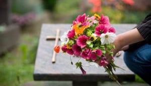 Burial or Cremation