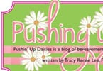 Pushin' Up Daisies Blog