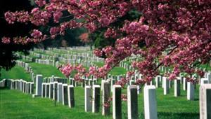 Funeral Services in Santa Clara CA