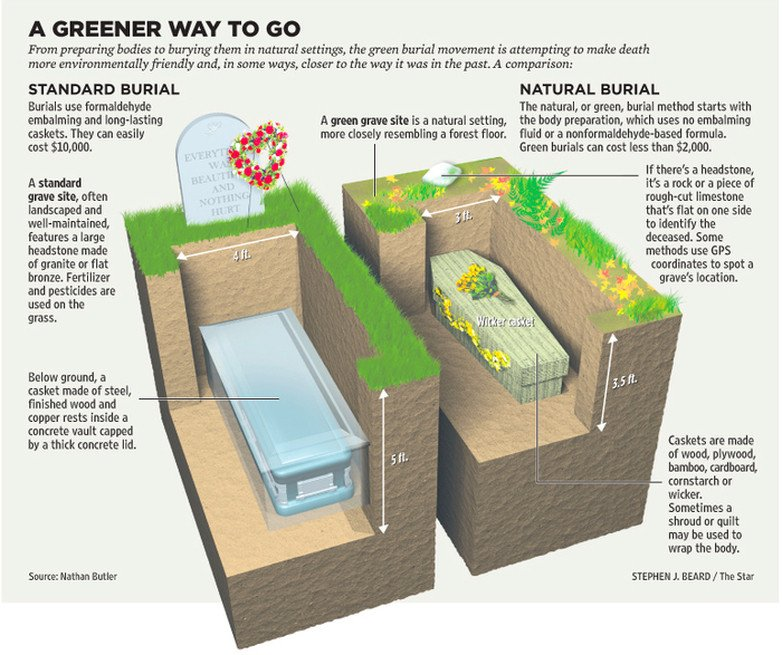 Green Burial & Eco-Friendly Options