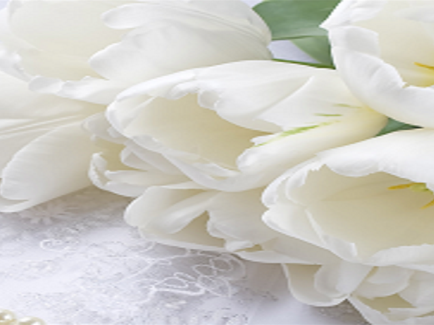 Funeral Homes and Cremation Services in Marianna, FL
