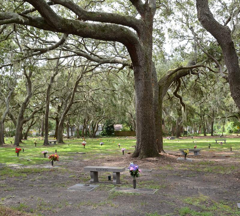 Beaches Memorial Park