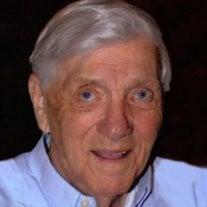 Mr. James N. Satchell
