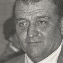 Mr. James G.  Johnston