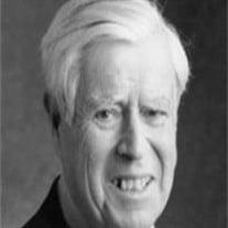 Alvin D. Shapiro