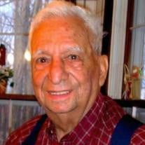 Andrew J. D'Agostino