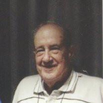Mr. Henry Vanderford Trippe Jr.