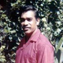 Peter  Nicholas  George  Jr.