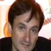 Peter Stelzenmuller