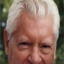 James Albert Schnaars