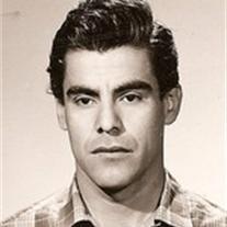 Santos Dominguez
