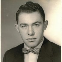 Mr. Clyde Mitchell Elkins