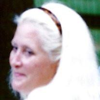 Lynn Ennis Iozzo,  Ph.D.