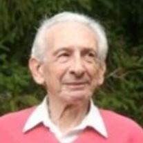 Mr. Joseph Silvagni Jr.