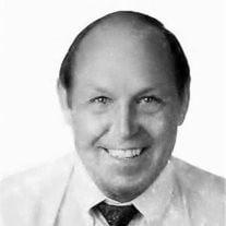 Peter J Vander Meer