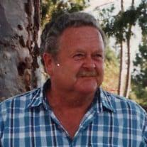 Robert Allen Freitas