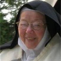 Sister Mary Thérèse of Jesus,  O.C.D.