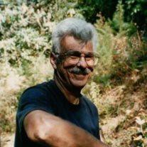 Louis Palladino