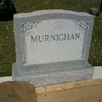 Mr. William E. Murnighan