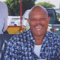Mr. Moses E. Green Jr.