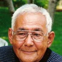 Daniel J. Murgaw, Jr.