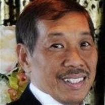 Thao T.  Phan