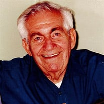 Mr. Louis James Di Lello