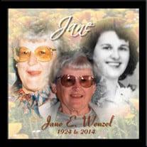 Jane E. Wenzel