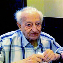 Mr.  Marcello Scannapiego