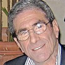 Steven  J.  Hammer