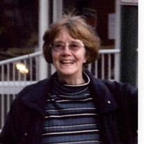 Susan Ann  Rainey