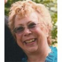 Donna Organisciak