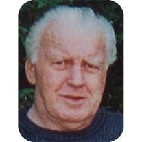 Robert A. Doyle