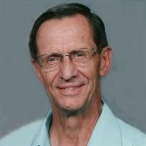 Rev. David Lowell Henriksen