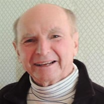 Dr. Robert P. Gulick