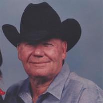 Raymond J Brison