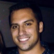 Mr. Michael Mijatovich