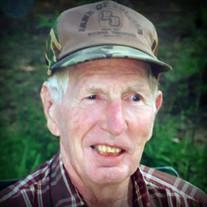 Mr. Ellis Howell, age 85 of Silerton, Tennessee