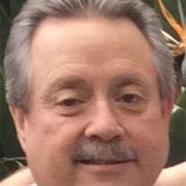 David C. Reed
