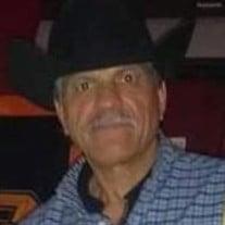 Mr. Jose D. Perez