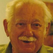 Ian D. Johnstone