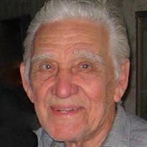 Mr. Harry L.  Palmer